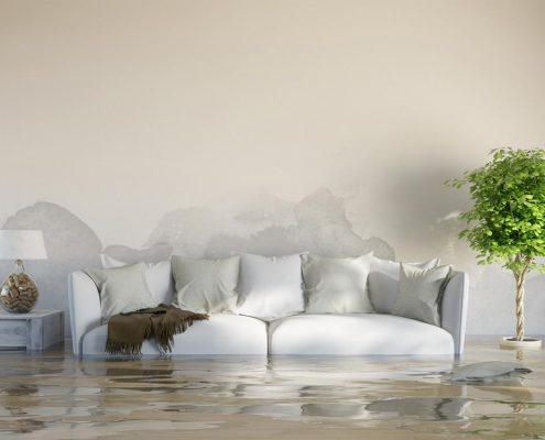 wasserschaden, welche versicherung zahlt